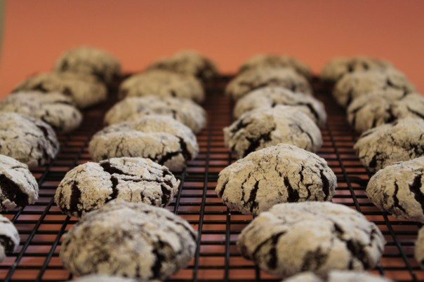 chocolate crinkle cookies all in a row