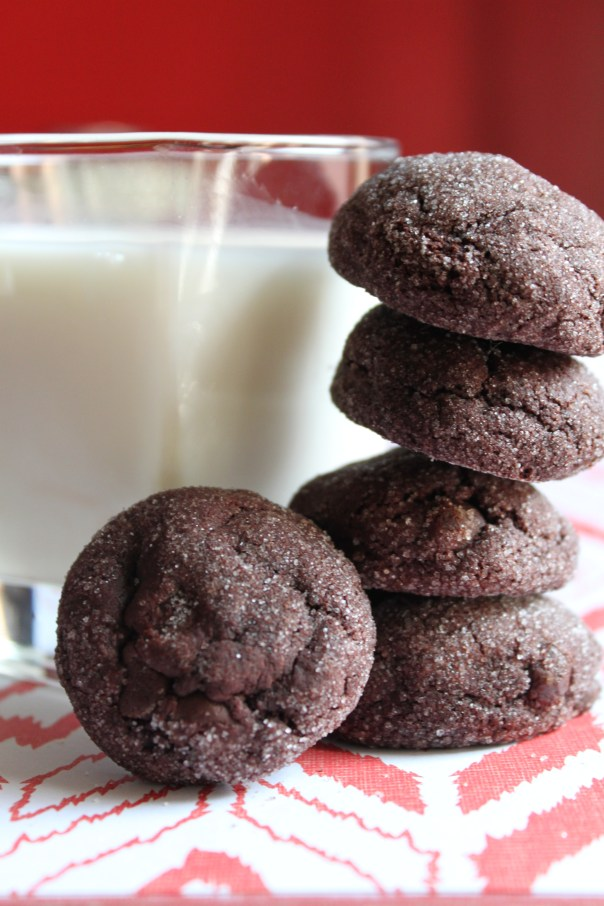 Spicy Chocolate Cookies and Milk