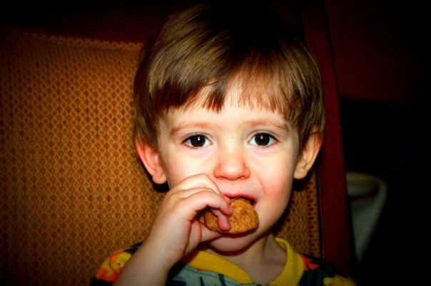 Charlie snacking on a stuffing cookie