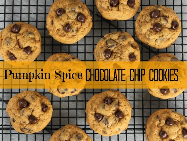 Pumpkin Spice Chocolate Chip Cookies | Lil Miss Cakes