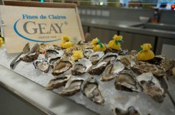 Oysters, anyone?