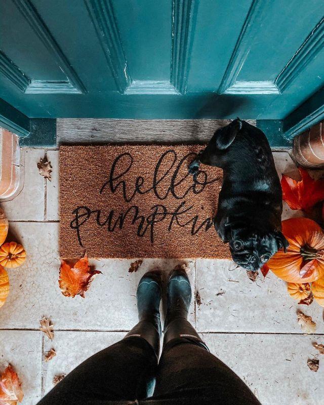 Playlist pour l'automne
