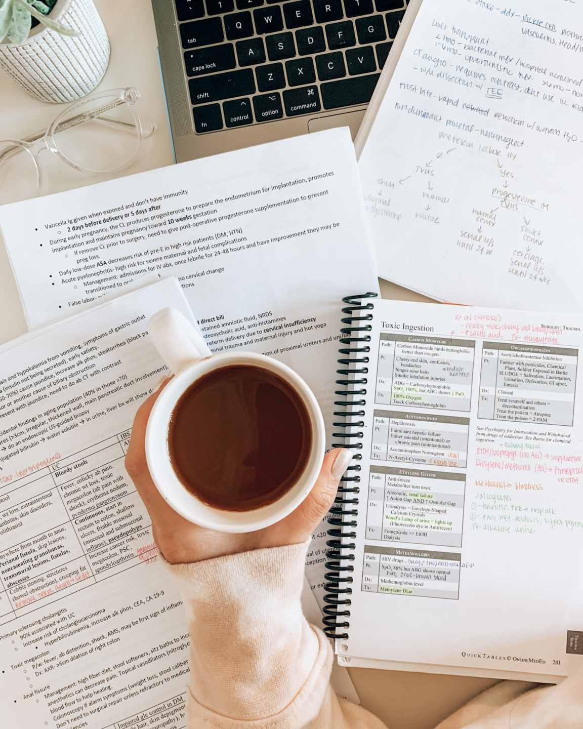Free USMLE Step 2 CK Complete Study Schedule: How I Scored 269 in 5 weeks