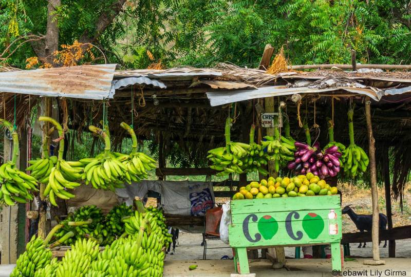 A roadside vegetable and fruit stand in rural Dominican Republic.