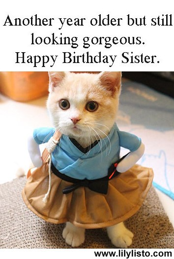 Happy Birthday Sister Images Funny : happy, birthday, sister, images, funny, Happy, Birthday, Sister, Funny, Images