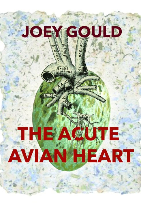 The Acute Avian Heart front cover