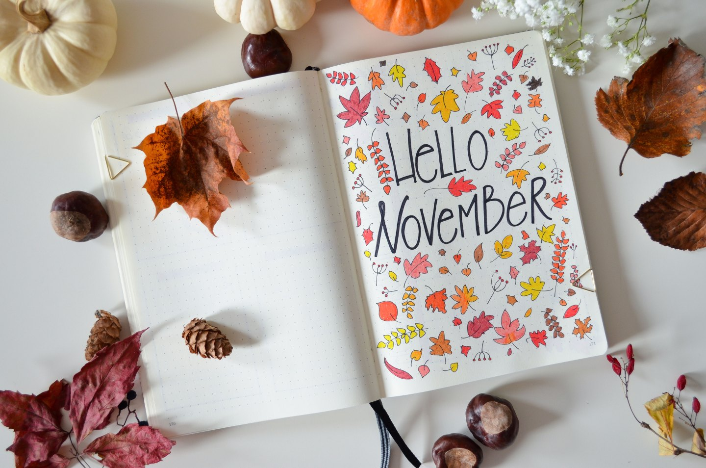 Lifestyle | November Bujo: Autumn Inspired Bullet Journal