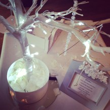 Wishing tree guest book hire Glasgow by LIly Special Events