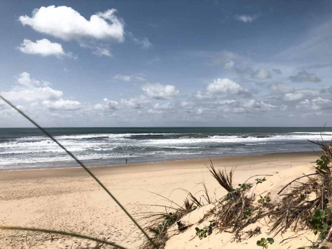 LACANAU OCEAN - LES BONNES ADRESSES (8)