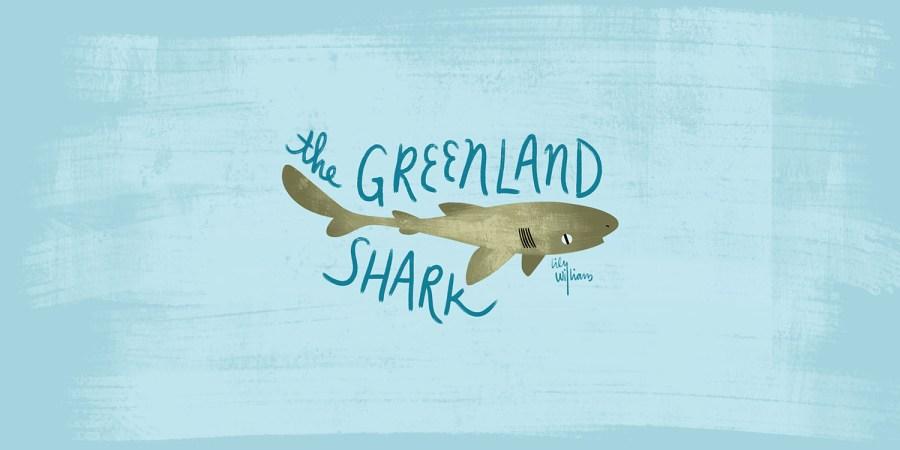 greenlandshark_sm