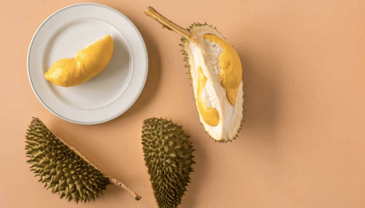 resipi durian