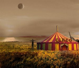 imagem-circo-24