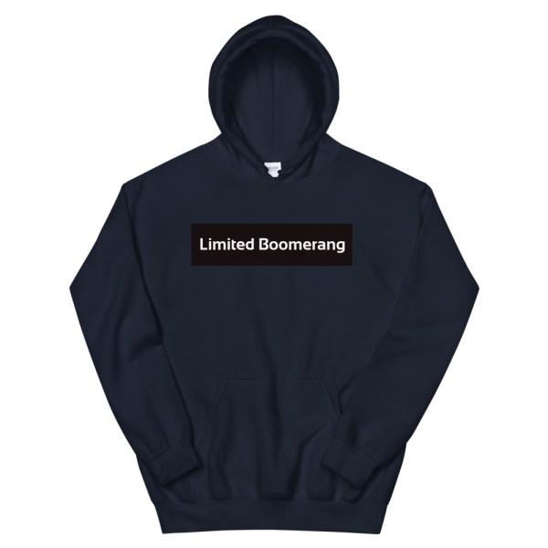 hoodie kids basic
