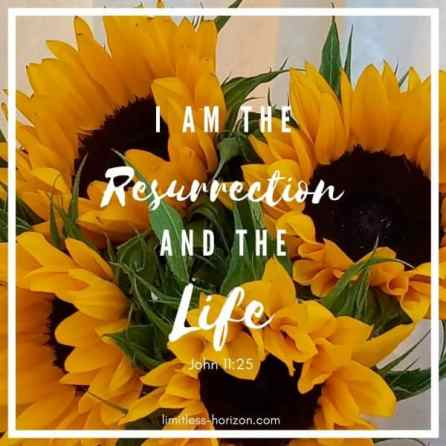 A picture of sunflowers with the text 'I am the resurrection and the life' John 11:25