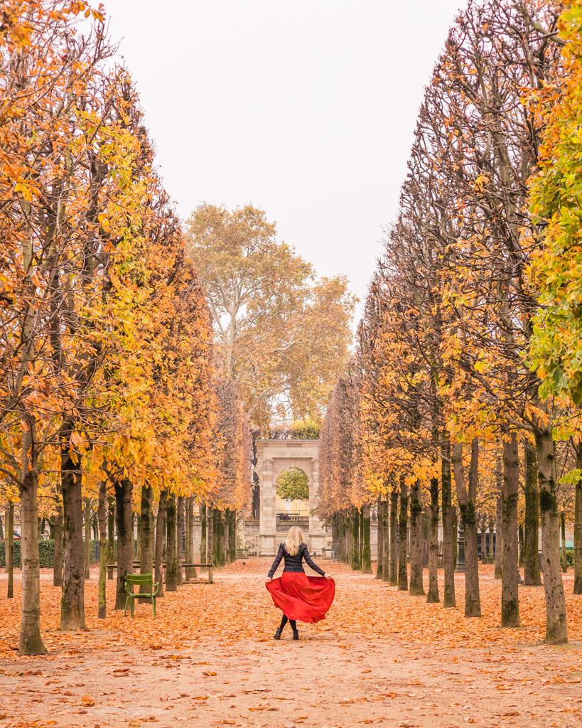 Tuileries Garden in fall in Paris