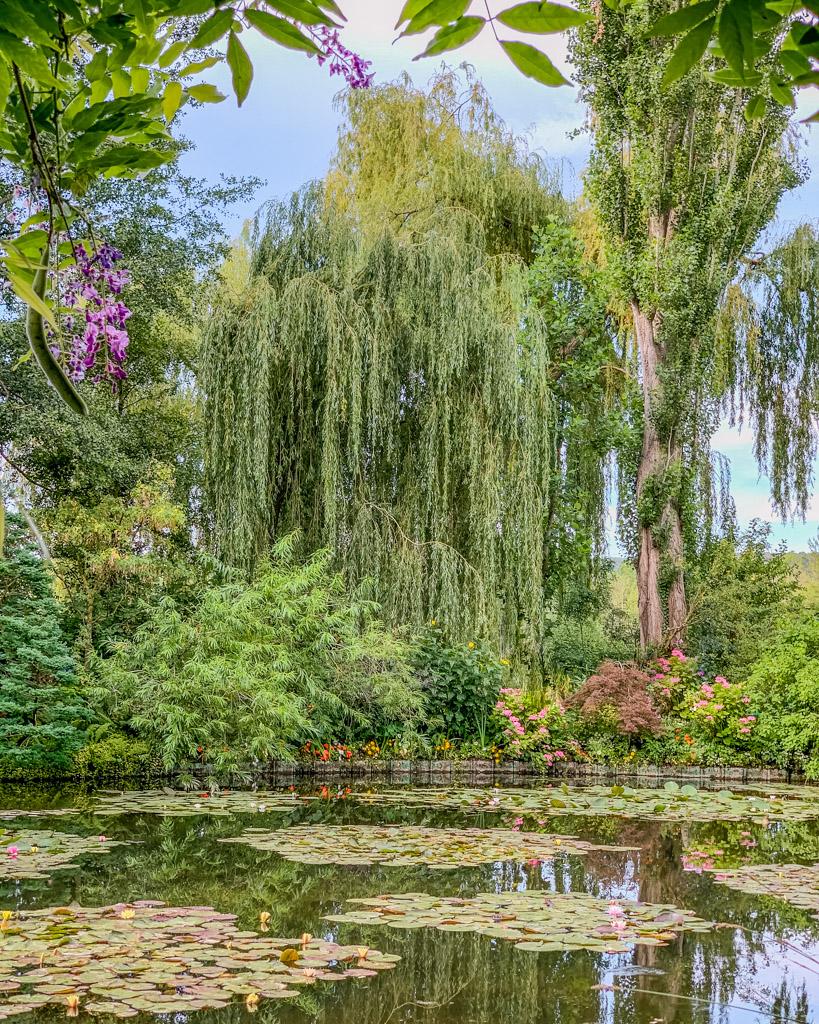 The Water Garden, aka the Japanese Garden, in Monet's garden in Giverny