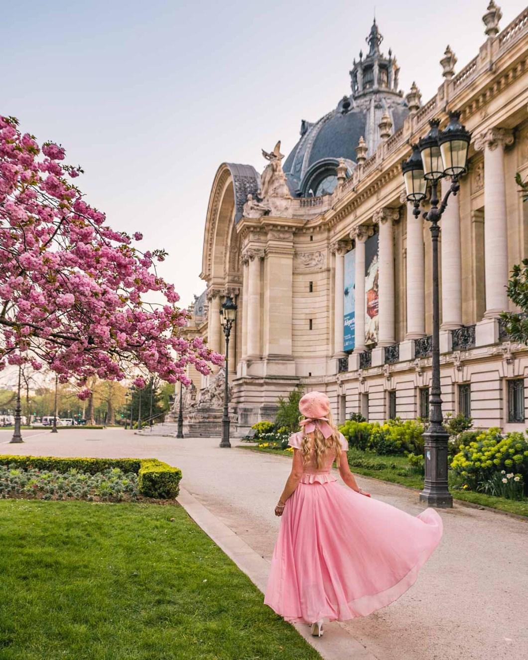 Cherry blossoms in front of the Petit Palais - Paris