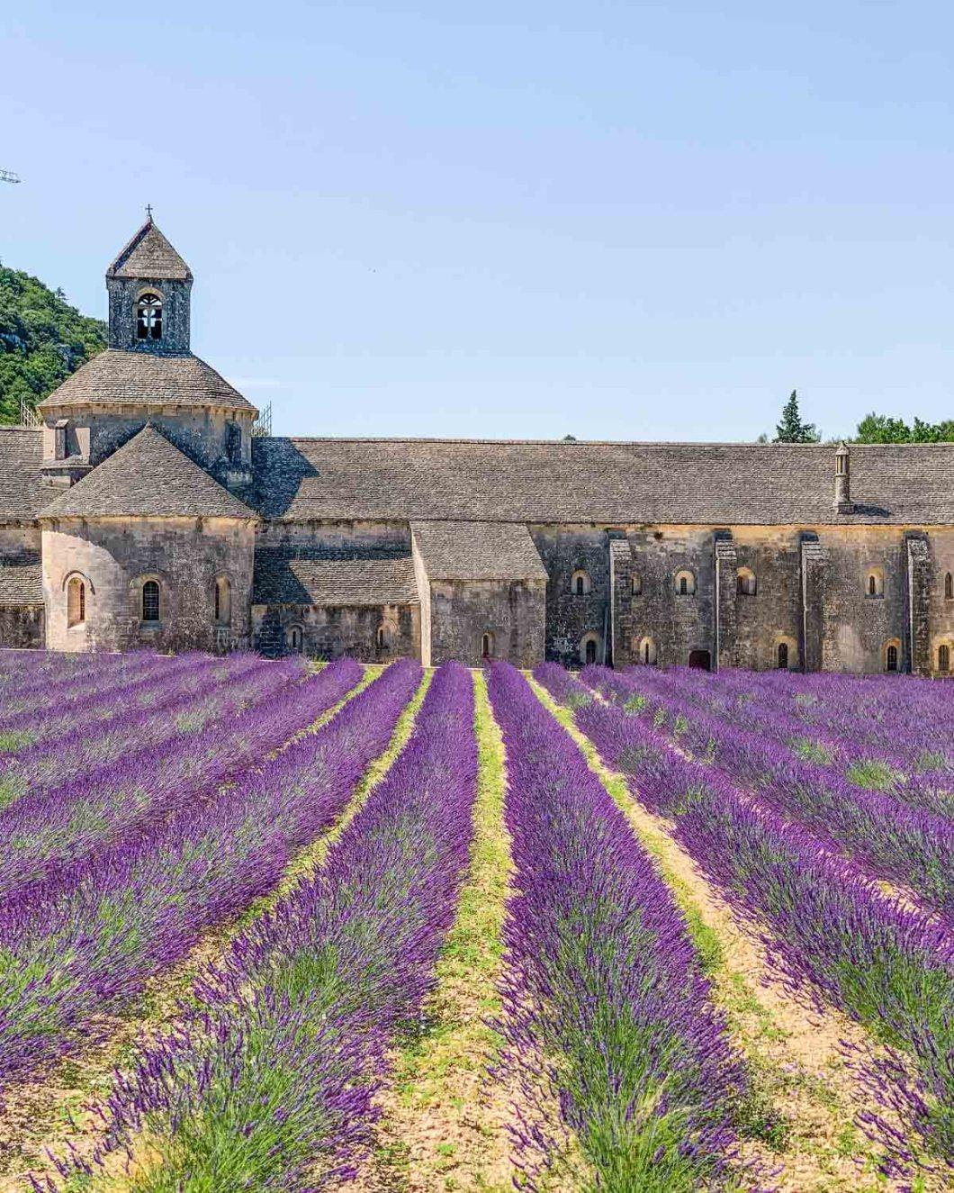 Sénanque Abbey in Provence