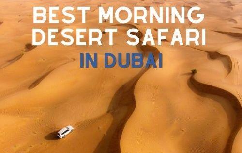 morning dessert safari in Dubai
