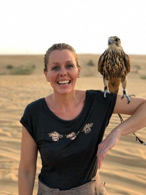 falcon in hand min 600x800 - Best Morning Desert Safari in Dubai