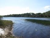 Braço da lagoa Cabiúnas