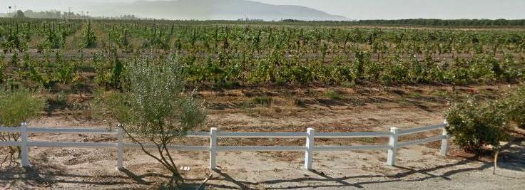California Wine Month, Temecula, San Diego and Los Angeles Wine Tours