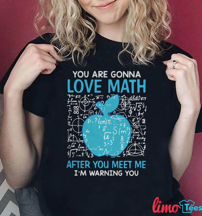 Teacher you are gonna love math after you meet me shirt