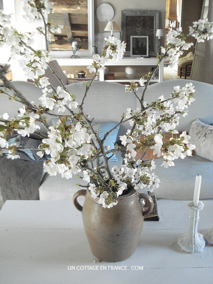Bouquet de fleurs de cerisiers romantique