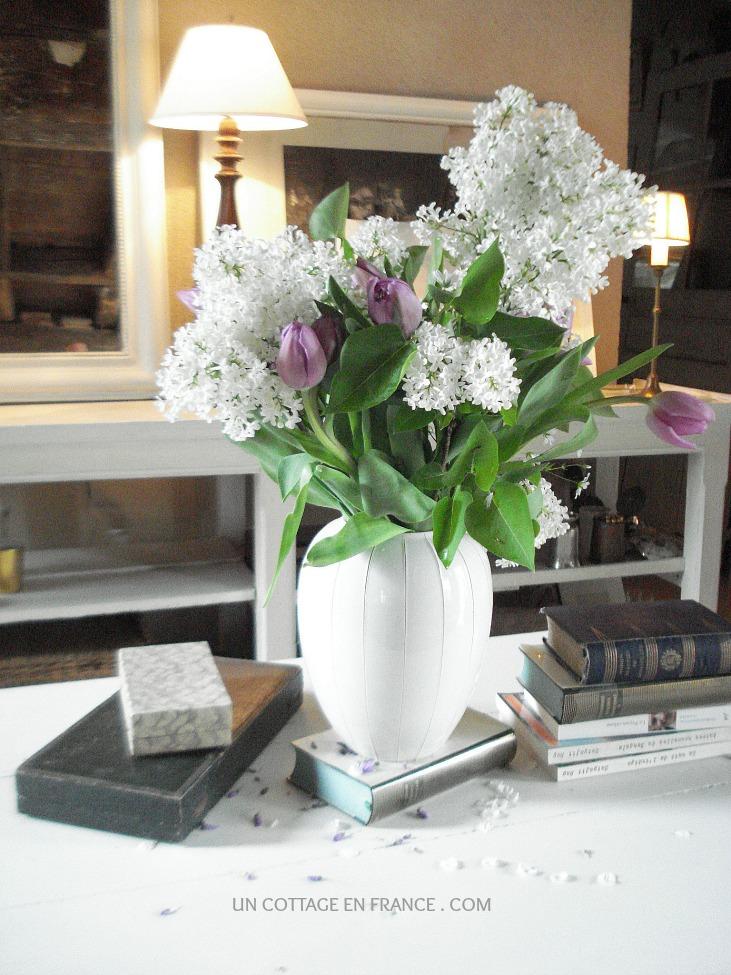 Les tulipes mauves au cottage 1
