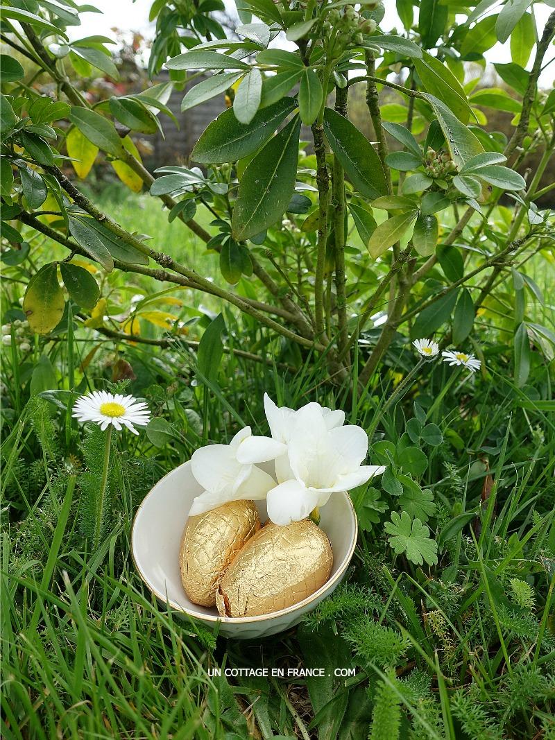 Des oeufs d'or dans le jardin (Golden eggs in the garden)