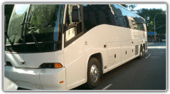 charterbus