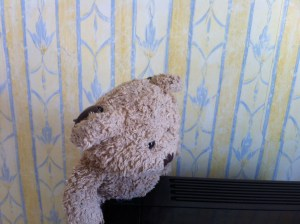 A teddy bear with hearing aids