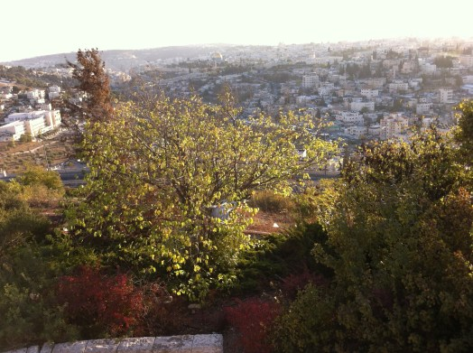 jerusalem-from-the-mount-of-olives
