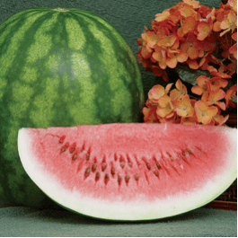 Red Watermellon