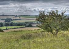 Tourism key focus in county council's plans to protect and enhance Lincolnshire Wolds
