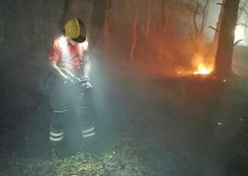Fire breaks out at Gainsborough woodland
