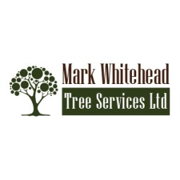 Mark Whitehead Tree Services Ltd