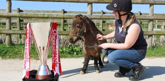 LCFC's Checkatrade Trophy Heads to Bransby Horses