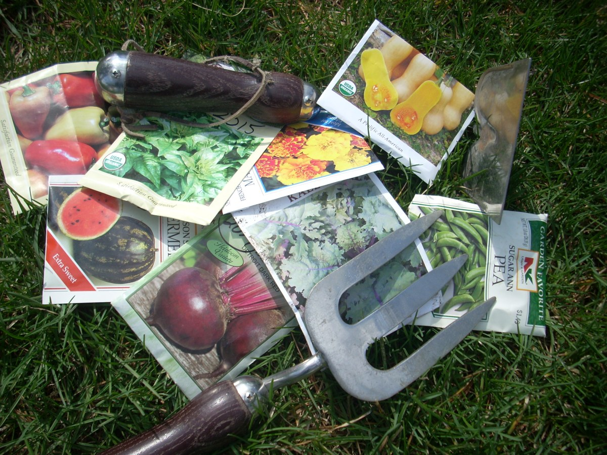 photo of seed packets and garden tools laying in the grass