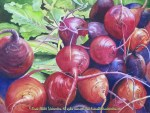 """Still Life paintings by Linda Abblett: Still lIfe with a bunch of fresh beets in watercolor by Linda Abblett. 15"""" x 11"""" Original - $700"""