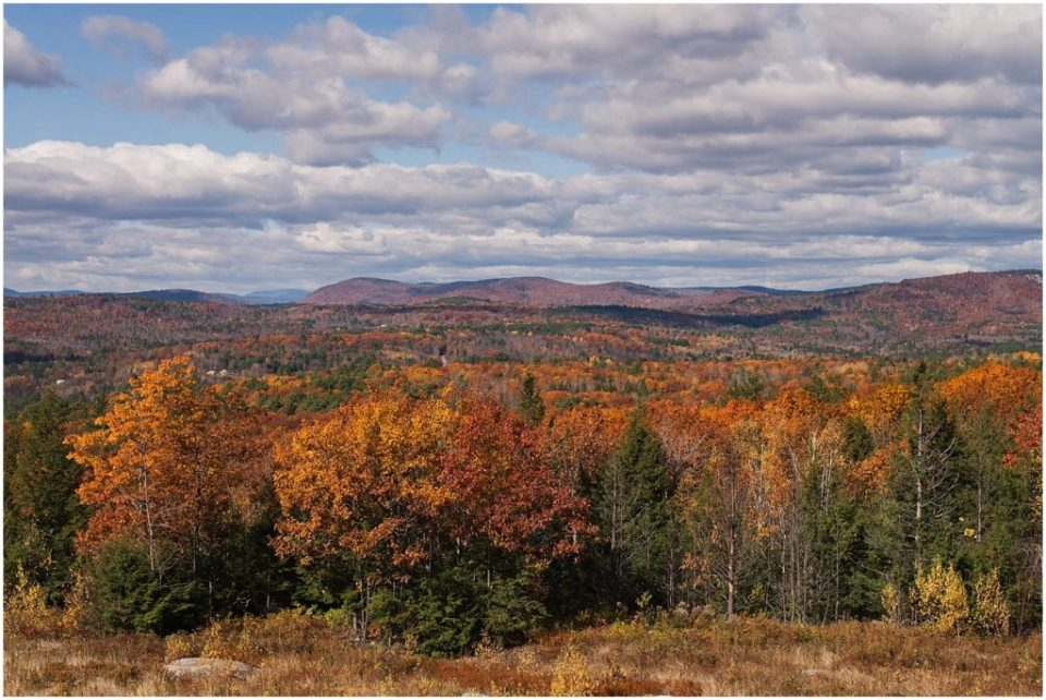 The gorgeous fall foliage at Granite Ridge Estate and Barn.
