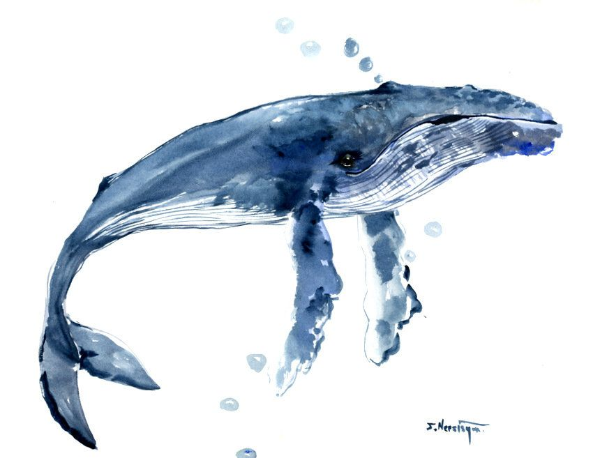 humpback-whale-painting-olga-shvartsur