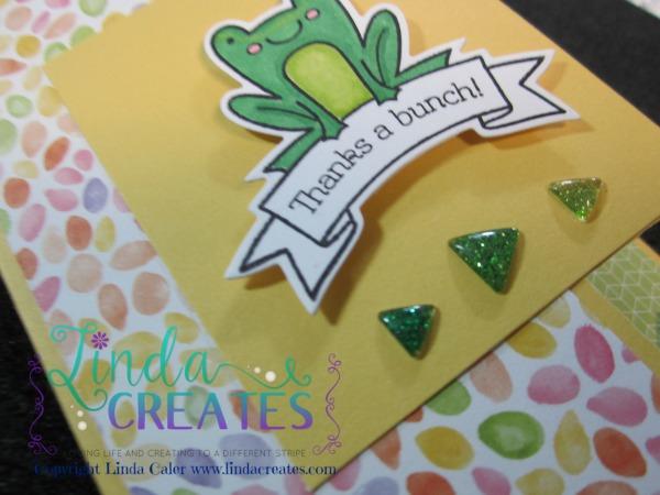 TAB Frog Card A wm