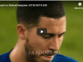 Eden Hazard vs Wolverhampton 2018/2019 |HD