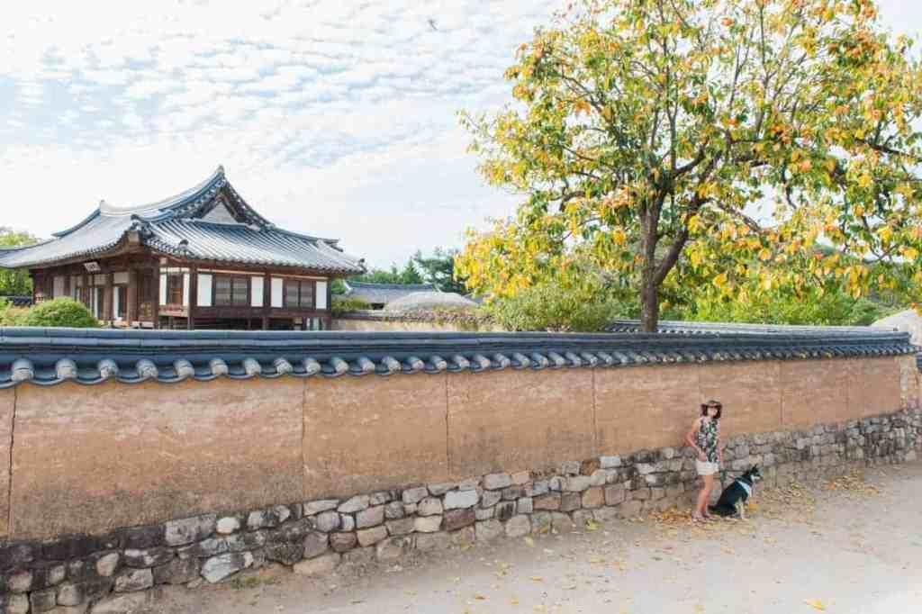 Camping in Korea Chuseok Gangwon Province (128 of 135)
