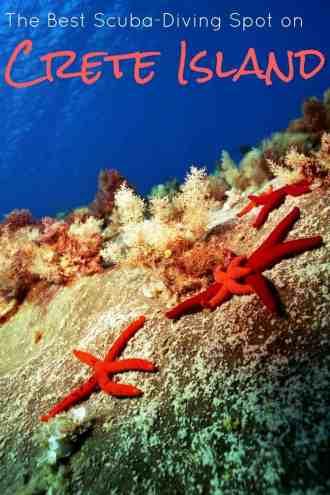 The Best Scuba-Diving Spot on Crete Island (2)