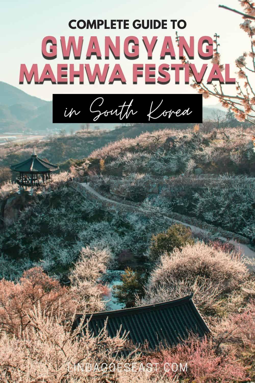 Gwangyang Maehwa Festival