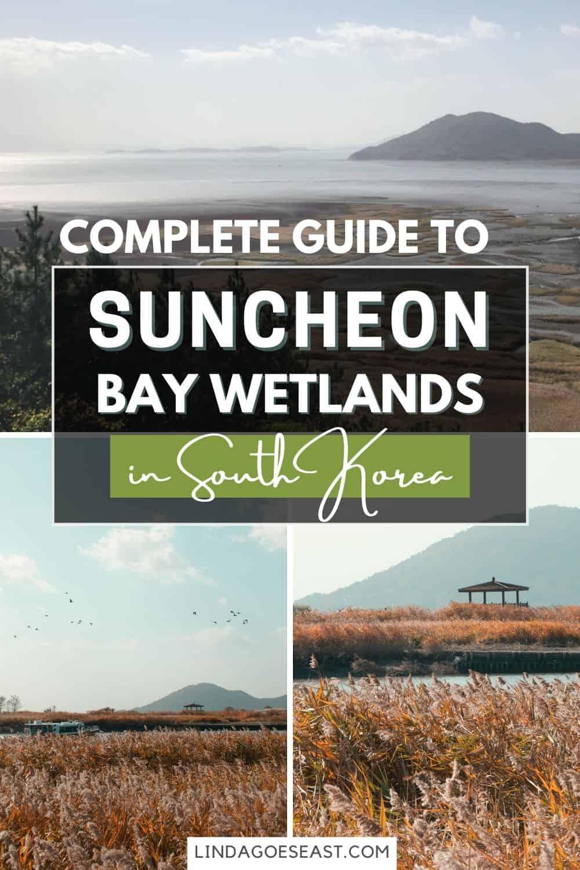 Suncheon Bay: Top Things To Do