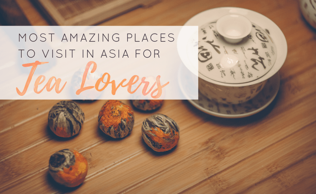 Must-Visit Locations for Tea in Asia