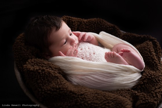 Newborn Photography Perth Photographer 013